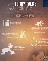 Terry Talks: The Developing Brain Infographic