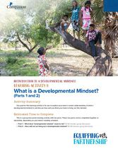 What is a Developmental Mindset?
